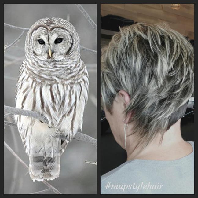 Blonde et légère comme une plume 🦉